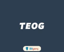 2018 TEOG Çalışma Programı