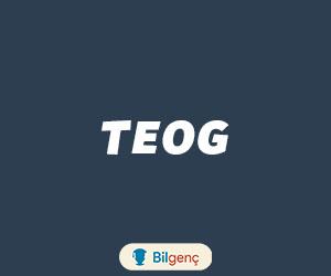 TEOG 2. Dönem Çalışma Programı