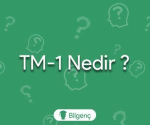 TM-1 Nedir