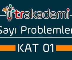 Sayı Problemleri Konu Anlatımı ve Soru Çözümleri