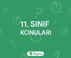 11. Sınıf Türk Dili ve Edebiyatı Konuları ve Müfredatı (2019-2020) MEB