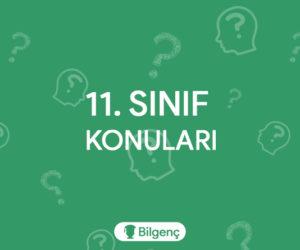 11. Sınıf Türk Dili ve Edebiyatı Konuları ve Müfredatı (2020-2021) MEB