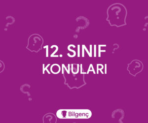 12. Sınıf Anadolu İmam Hatip Lisesi Dersleri (Sayısal-Sözel-Eşit Ağırlık) 2018-2019