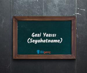 Gezi Yazısı Nedir | Gezi Yazısının Özellikleri ve Örnekleri