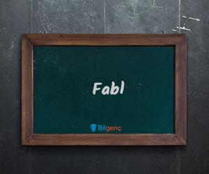 Fabl Nedir | Fabl Özellikleri ve Yapısı