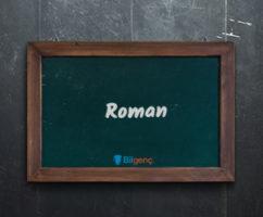 Roman Örnekleri | Uzun ve Kısa Romanlar