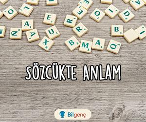 TYT Türkçe Sözcükte Anlam Testi-2 | Online Test Çöz