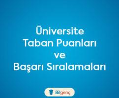 Bolu Abant İzzet Baysal Üniversitesi 2020 Taban Puanları ve Başarı Sıralamaları