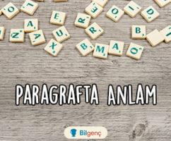 TYT Türkçe Paragrafta Yardımcı Düşünce Testi | Online Test Çöz
