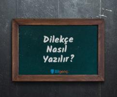Dilekçe Nasıl Yazılır? | Dilekçenin Kuralları