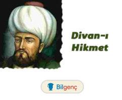 Divan-ı Hikmet | Özellikleri ve Örnekleri