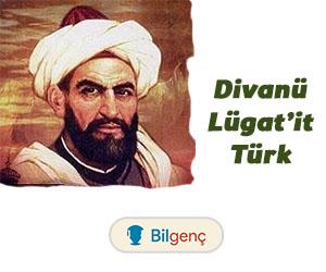 Divanü Lügat'it Türk | Özellikleri ve Örnekleri