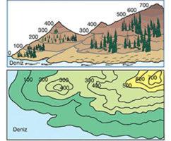 İzohips Haritası Nedir | İzohipslerin Özellikleri Maddeler Halinde