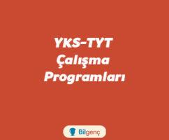 YKS (TYT-AYT) Yabancı Dil Çalışma Programı 2020