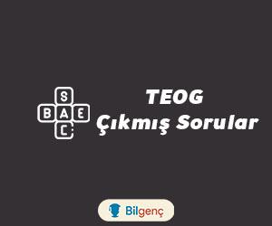 TEOG Matematik Çıkmış Soruları ve Cevapları (PDF)