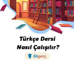 Türkçe Nasıl Çalışılır? Türkçe Çalışma Taktikleri